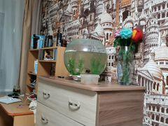 Продам круглый аквариум