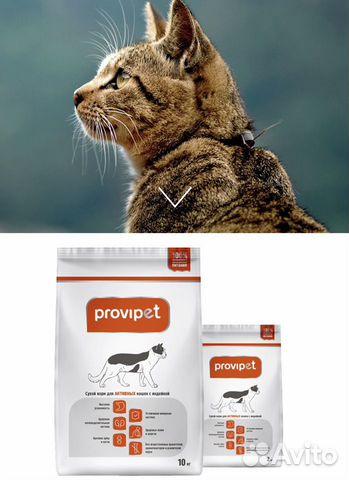 Корм для кошек Провипет от 2 кг 89872963106 купить 1